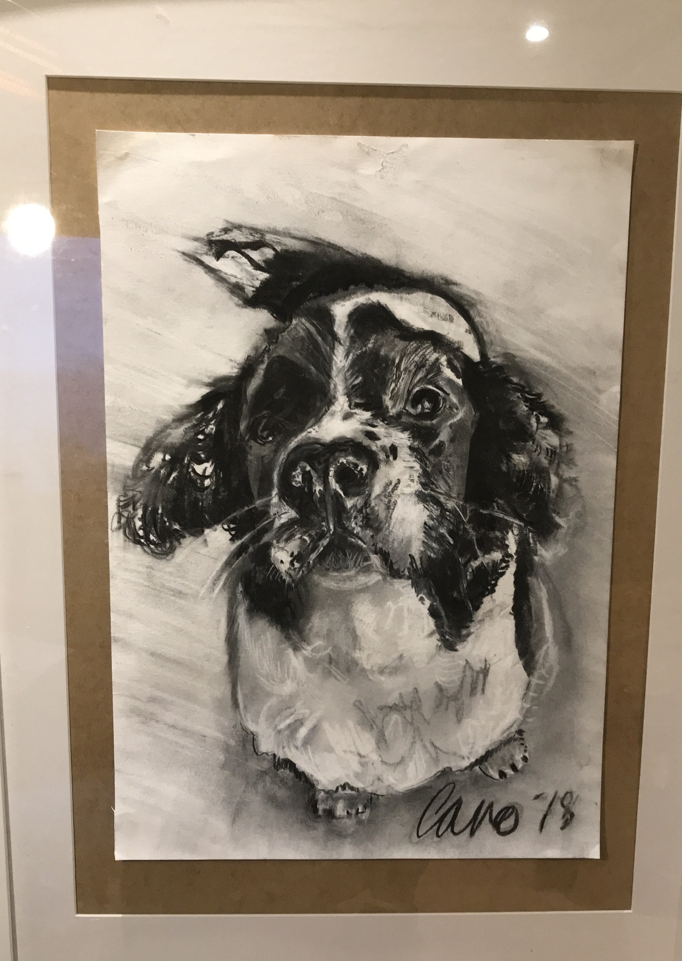 Bespoke dog drawing